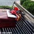 Qué tener en cuenta al preparar una maleta