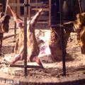 Dónde comer cordero al asador en Buenos Aires